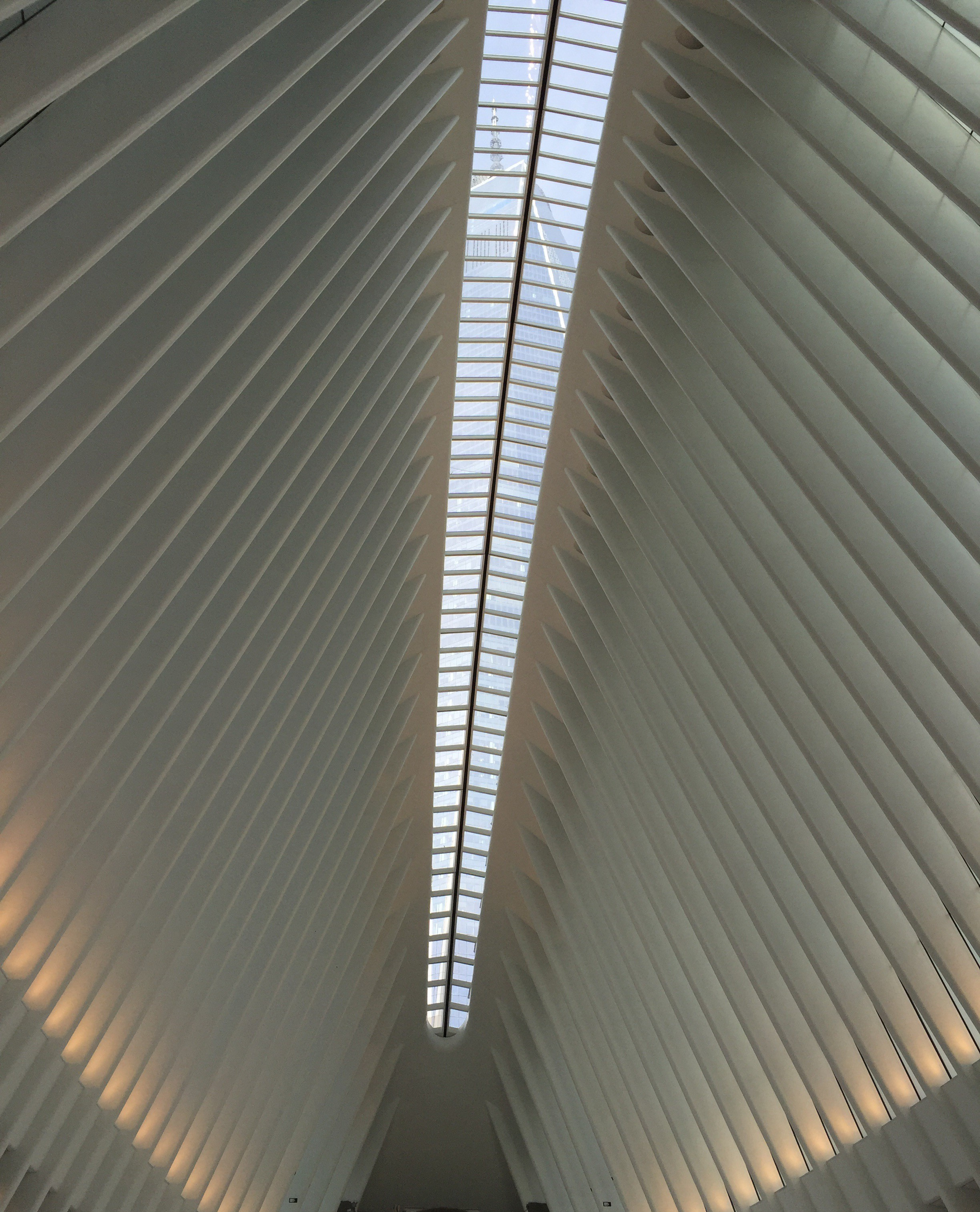 1 WTC seen through the skylights atop the Oculus.